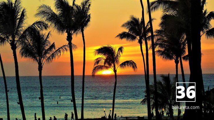 経費削減アイデア|経費支払いを一点集中させて毎年ハワイ旅行に0円で行く方法