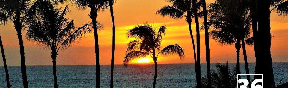 経費削減アイデア|支払いを一点集中させて毎年ハワイ旅行に0円で行く方法